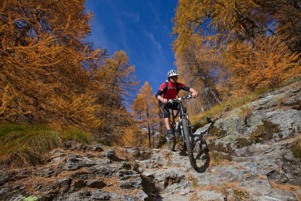 Mountain Bike in Valposchiavo